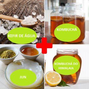 Combo – Kefir de Água + Kombucha + JUN + Kombucha do Himalaia – com Frete Grátis