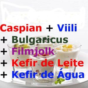 6 Probióticos – Kefir de Leite + Kefir de Água + Caspian + Viili + Bulgaricus + Filmjolk – com Frete Grátis